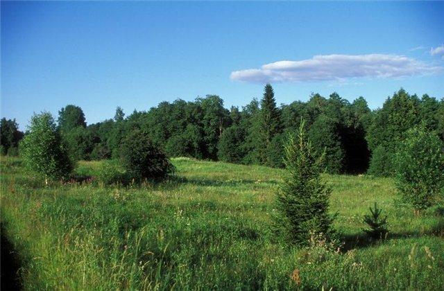 Национальный парк Валдайский, образованный в 1990 году, находится на территории трех районов Новгородской области...