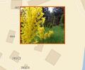 Ботанический сад Балтийского федерального университета имени Иммануила Канта