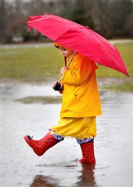 Где купить качественный зонт в Калининграде