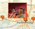 Где можно поесть суши в Калининграде?