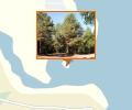 Сосновый бор острова Ягры