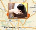 Где лучше всего купить грунт для цветов в Калининграде?