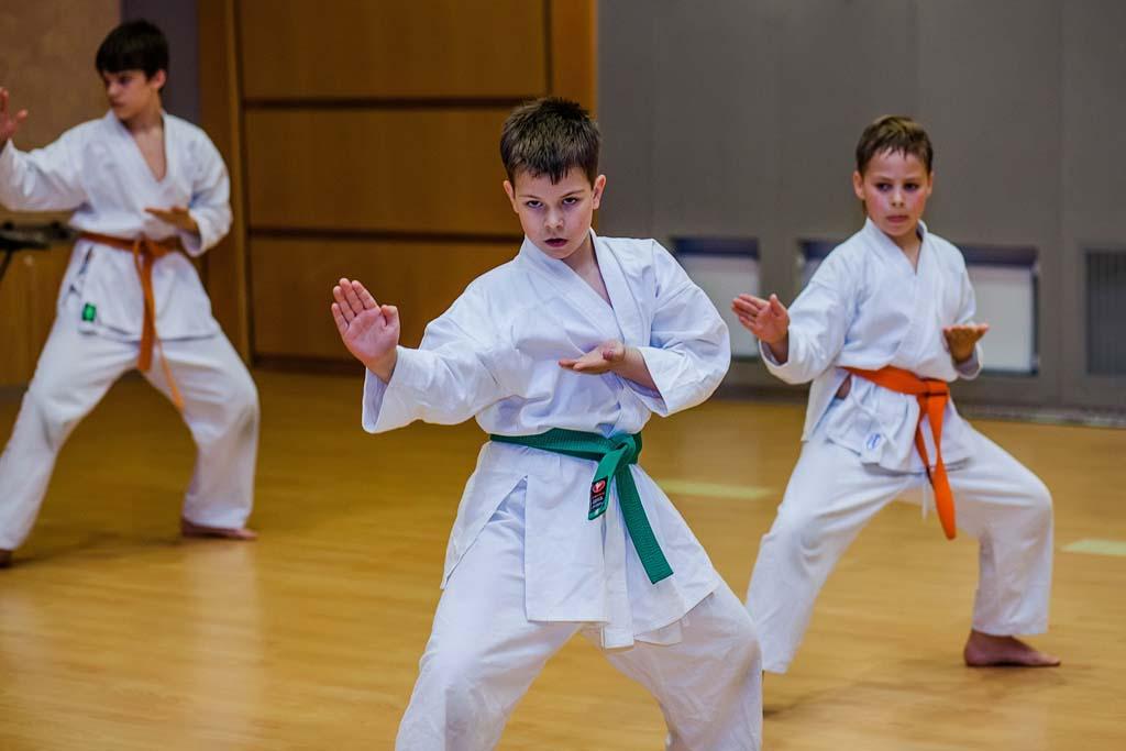 Школы каратэ и клубы каратэ в Калининграде