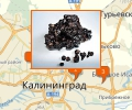 Где купить мумие в Калининграде?