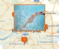 Где найти бассейн для беременных в Калининграде?