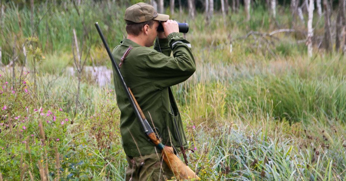 Охота в Калининграде - Охотничьи базы Калининграда