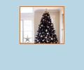 Где купить новогоднюю ёлку в Калининграде?